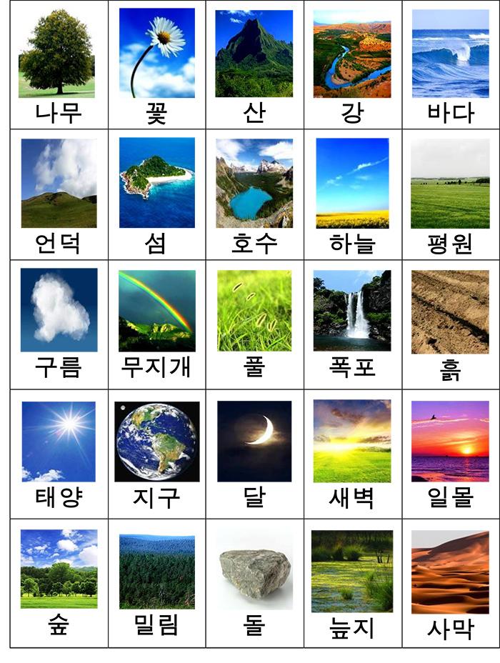 лексика природа карточки-2