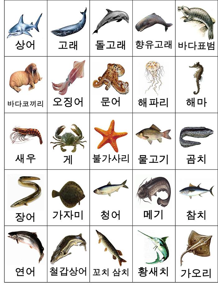 лексика рыбы и мор. животные карточки-2